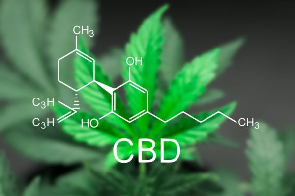 CBD Oil – How it can improve your Heart Health